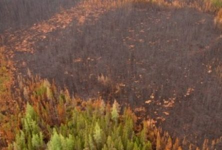 Danger d'incendie en hausse sur la Côte-Nord