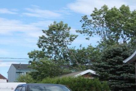 Les forts vents provoquent une coupure de courant dans le secteur du plateau