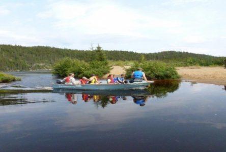 Une trentaine de jeunes participent au camp scientifique forestier