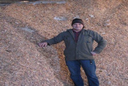 Biomasse forestière: la Côte-Nord réunit les conditions gagnantes