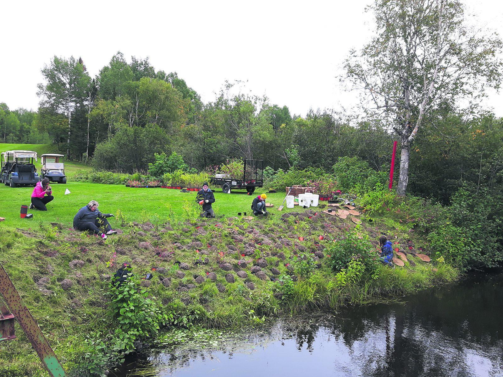 Végétalisation d'une bande riveraine – L'OBVM et des jeunes du secondaire plantent 500 arbustes