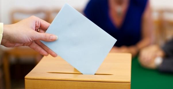 Élection partielle dans le quartier La Chasse : les candidats s'expriment