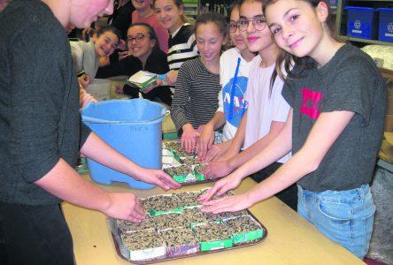 L'école Serge-Bouchard parmi les finalistesd'un concours canadien