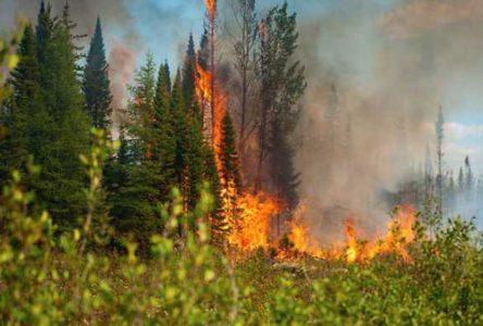 Selon Ressources Naturelles Canada – Le risque de feux de forêt va encore augmenter