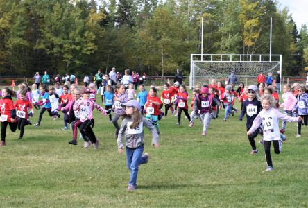 C'est la folie furieuse au cross-country