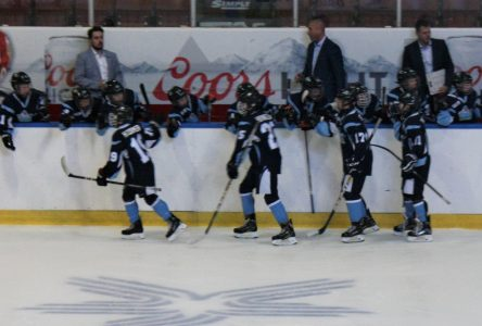 Hockey mineur: les Nord-Côtiers dominent l'Océanic