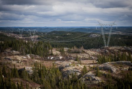 Ligne Micoua-Saguenay : le déboisement débutera en janvier 2020 sur la Côte-Nord