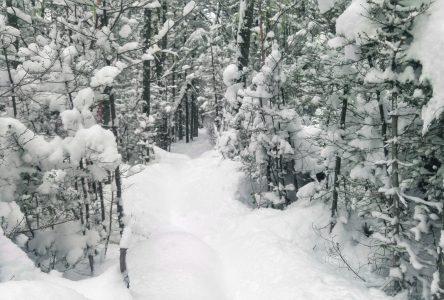 À peine 43 centimètres de neige en décembre dans la Manicouagan