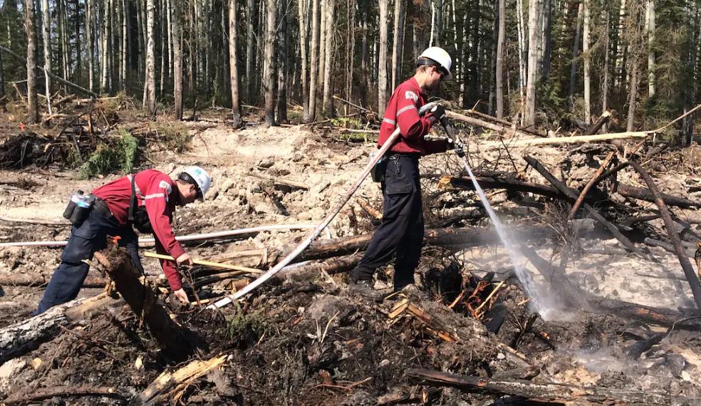 Trois pompiers forestiers de la Côte-Nord dépêchés en Australie