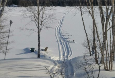 La neige reprend ses droits en février