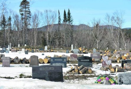 Les Bergeronnes : la Fabrique Bon-Désir sacrifie les arbres de son cimetière