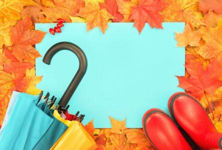 Après une fin d'octobre hivernale, novembre s'annonce automnal