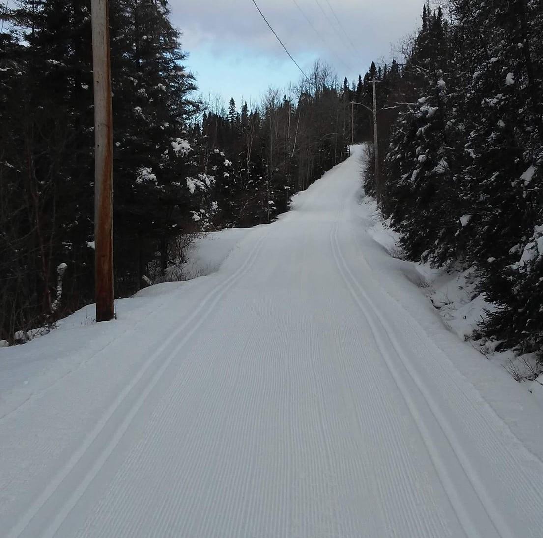 Les clubs de ski de fond prient pour de la neige